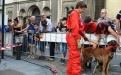 Les chiens de la Protection civile se laissent volontiers caresser par le public